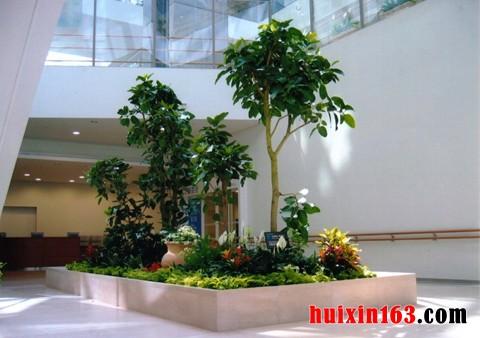 入至室内,并通过科学的设计,规划,组织形成的具有多种功能的自然景观.